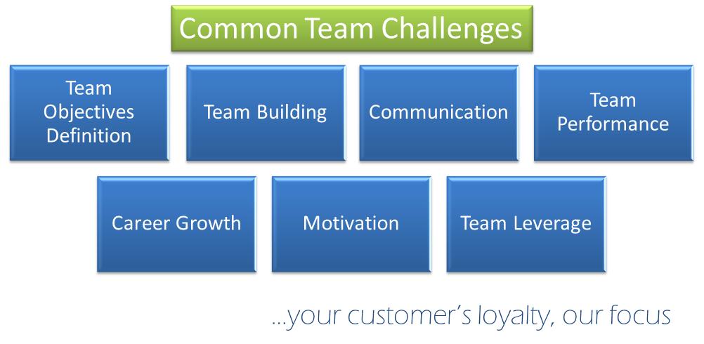 Common Team Challenges